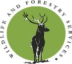 Wildlife and Forestry Services